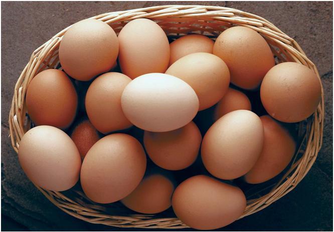 Suzetteroberts - brown eggs - 12 03 15