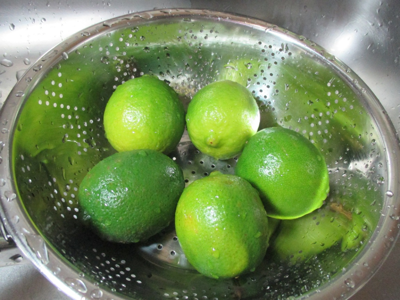 Suzetteroberts - fresh homemade coconut lime ice cream - 01 26 17 (2)