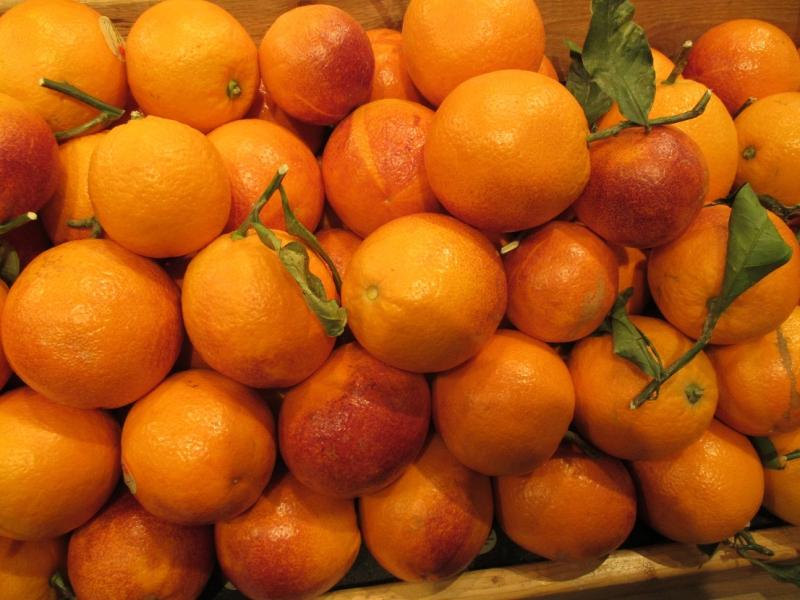 Suzetteroberts - blood orange ice cream - 04 06 17 (2)