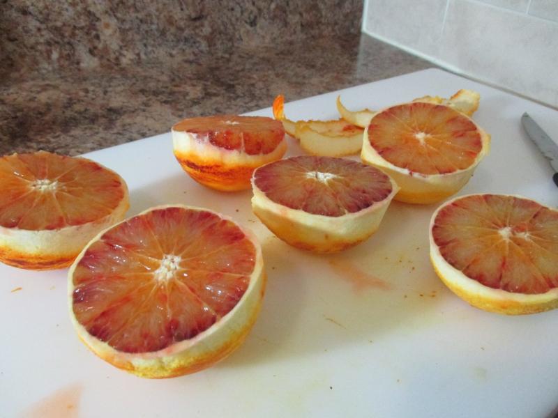 Suzetteroberts - blood orange ice cream 04 06 17 (4)