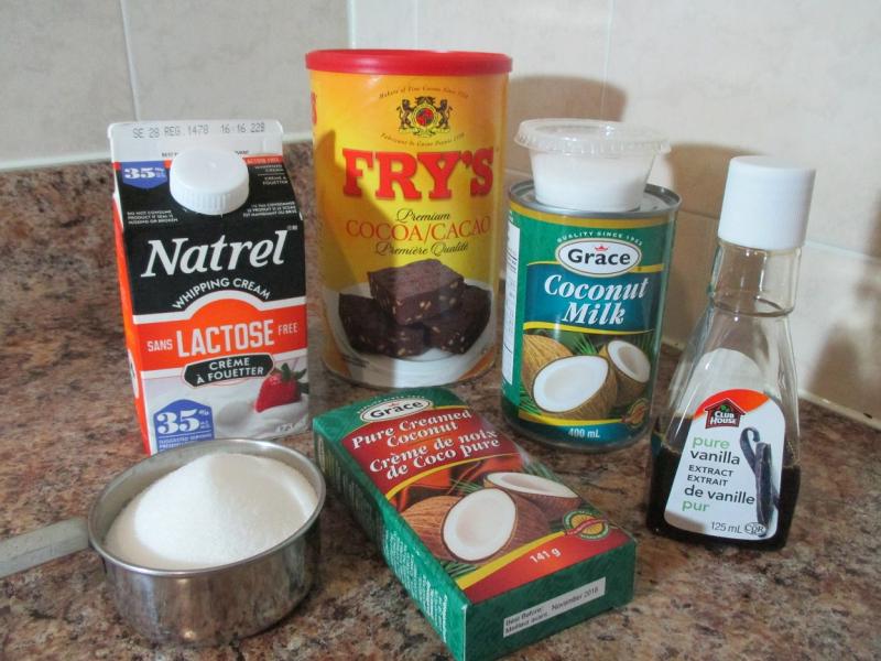Suzetteroberts - chocolate coconut gelato - 09 21 16 (2)