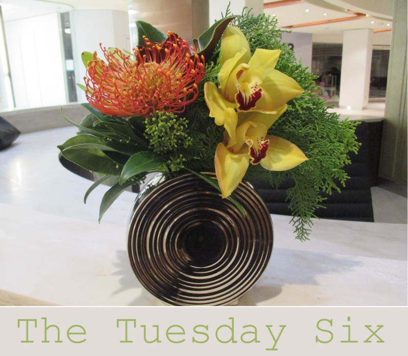 Suzetteroberts - the tuesday six - 01 10 17 (a)