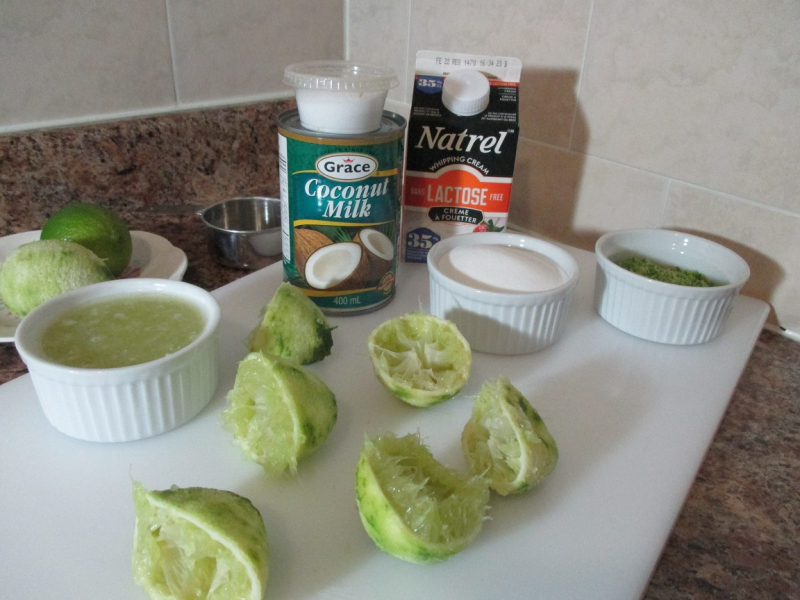 Suzetteroberts - fresh homemade coconut lime ice cream - 01 26 17 (4)