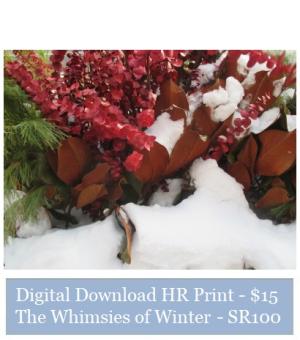 Suzetteroberts - suzette's print shop - the whimsies of winter - SR100
