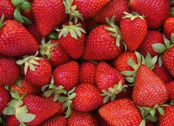 Suzetteroberts - strawberry succulence - 2018