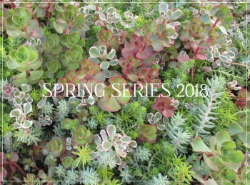 Suzetteroberts - spring series - 2018 (march - june)