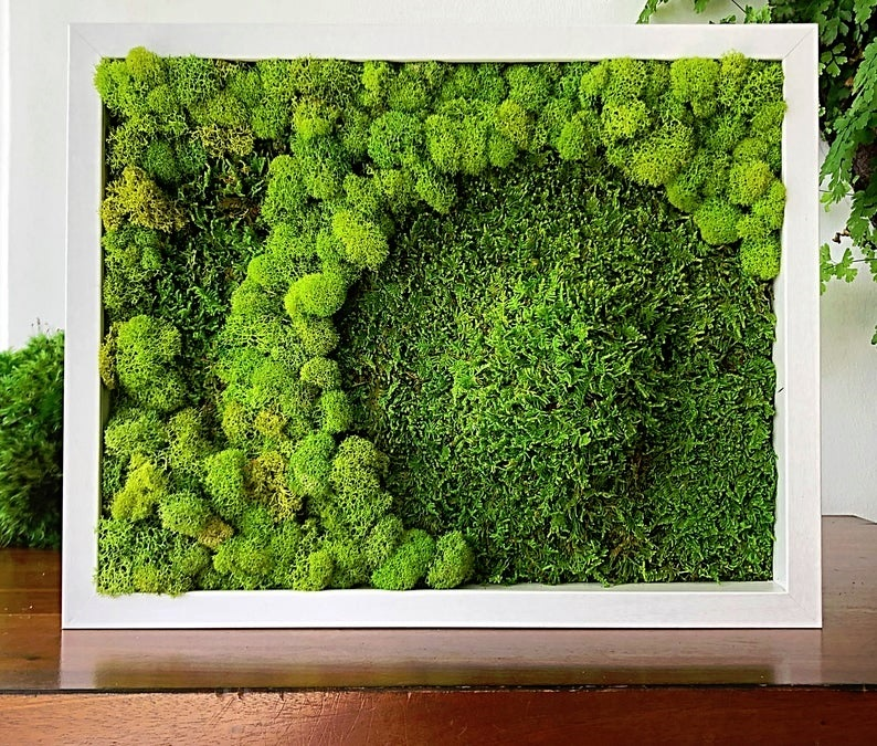 Suzetteroberts - art - 07 2020 - moss wall art