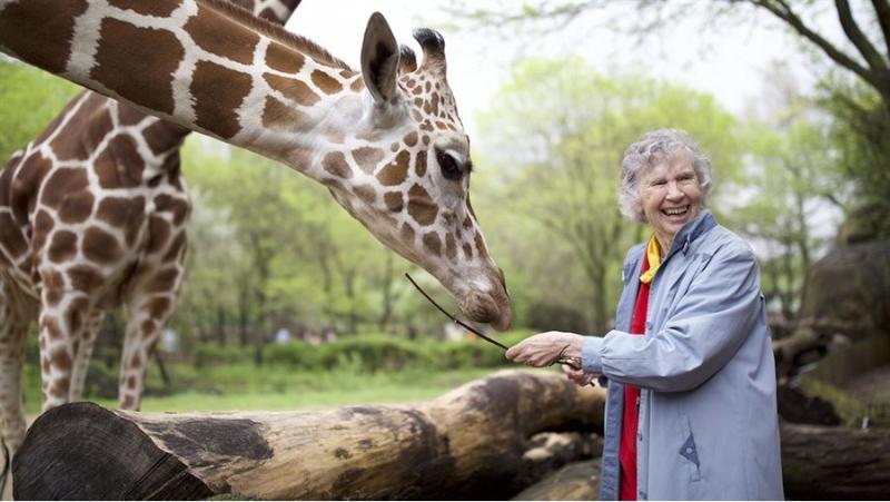 Suzetteroberts - art - 06 2020 - hot docs - the woman who loves giraffes