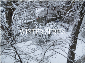 Suzetteroberts - winter series - 2020 - 2021