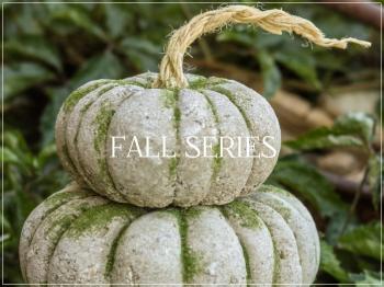 Suzetteroberts - fall series - 2021